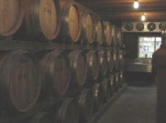 Wine casks stacked 3 high in long rows