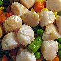 Bay scallops on a plate with vegitables