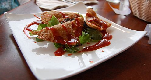 fried wonton appetizer