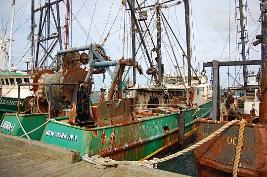fishing trawlers at dock