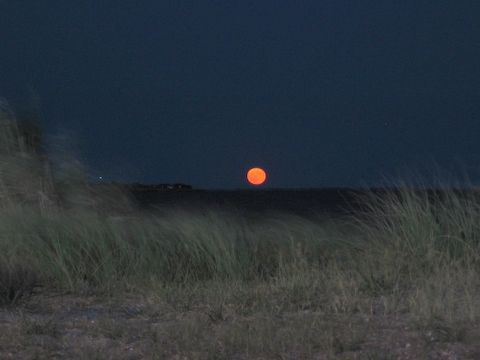 A moon rising